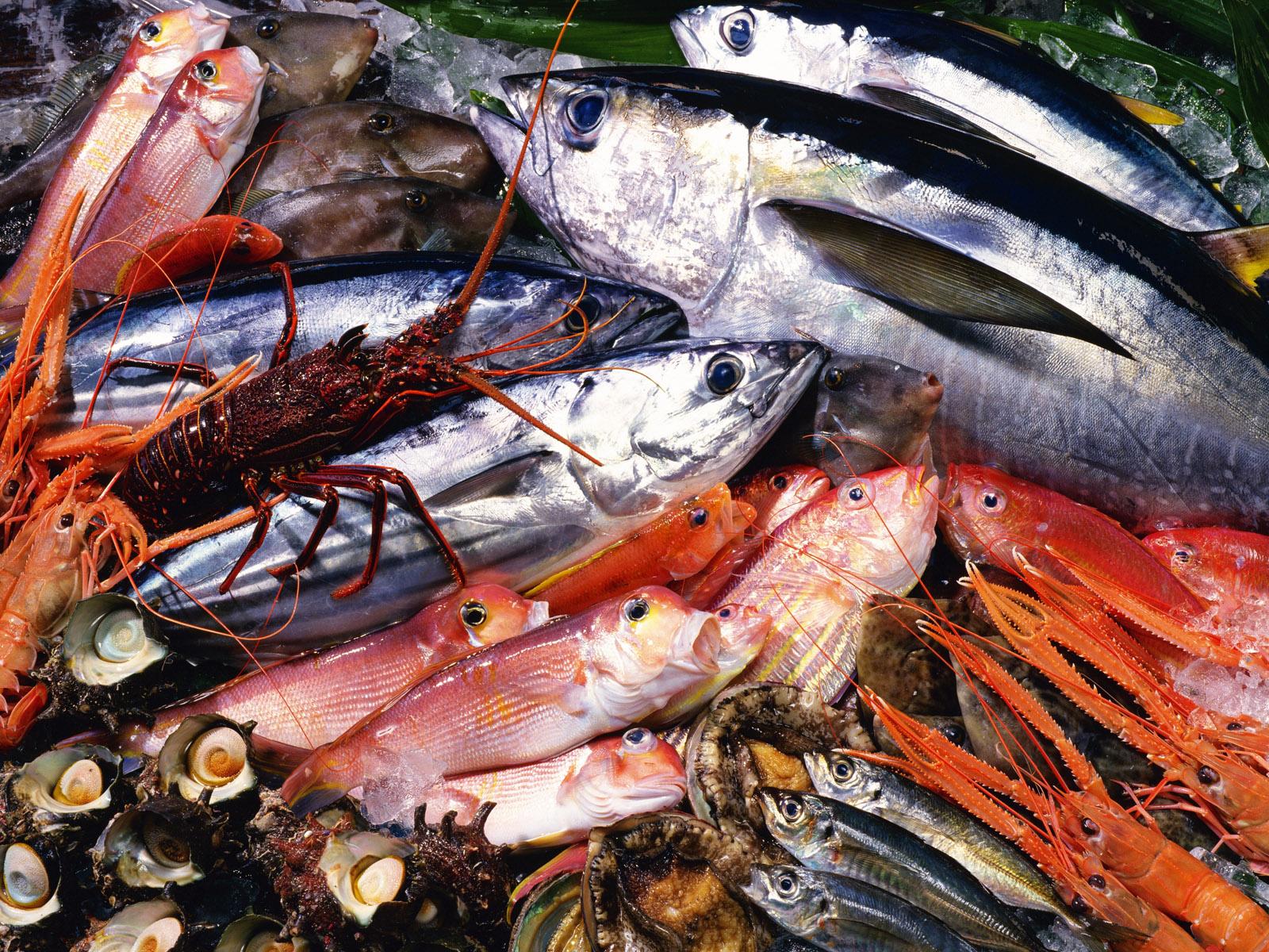Seafood-53-NWKS5Q9CQR-1600x1200